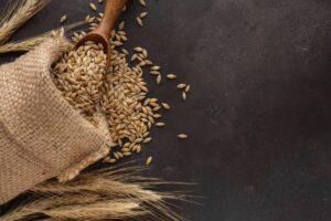Пшенични и Зърнени храни